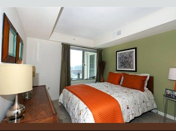 EasyRoommate US - Furnished Luxury Downtown Stamford Apt. - Stamford Area, Stamford Area - $2000