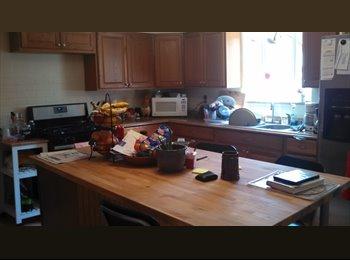 EasyRoommate US - Room In Lawrenceville For Rent! - Pittsburgh Eastside, Pittsburgh - $400