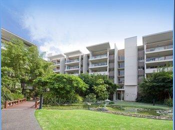 EasyRoommate AU - Room for Rent in Bowen Hills - Bowen Hills, Brisbane - $230