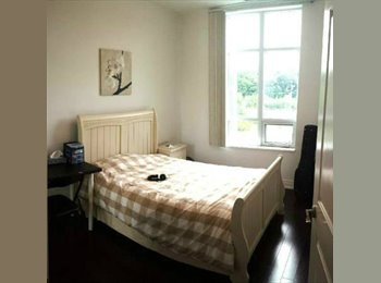 EasyRoommate CA - Room with private washroom- walking distance from - Yonge & Sheppard, Toronto - $700