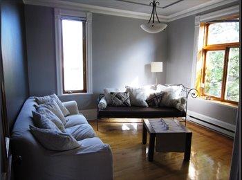 EasyRoommate CA - Chambre à louer dans une superbe coloc! - Le Plateau-Mont-Royal, Montréal - $520