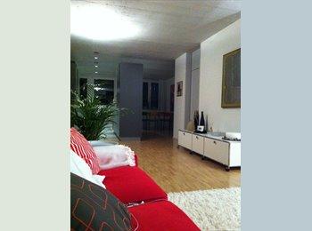 Sehr schöne 3 Zi Wohnung, super Lage - Wallisellen