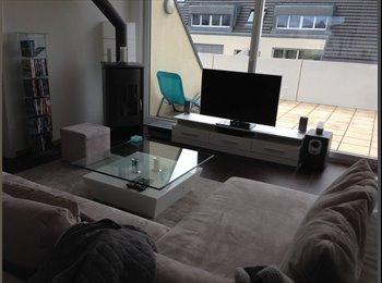 une chambre dans grand appartement