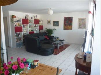 EasyWG CH - chambre de 12 m2 dans appartement 5 pièces et demi - Bulle, Gruyère - Greyerz - CHF700