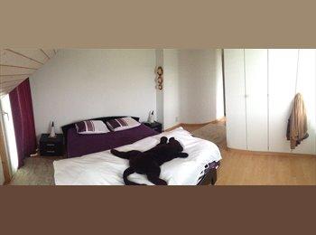 Chambres à louer dans une grande villa à Cugy VD
