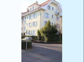 EasyWG CH - Zimmer auf Zeit zu vermieten - Bern / Berne, Bern / Berne - CHF600