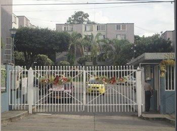 CompartoApto CO - Habitacion dama Bucarica Sector 19 apto 521 - Bucaramanga, Bucaramanga - COP$*