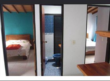 CompartoApto CO - Habitaciones amobladas(5 minutos de El Rodeo) - Medellín, Medellín - COP$*