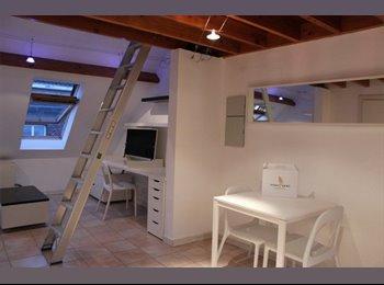 Duplex Studio Te huur Gent Centrum bemeubeld
