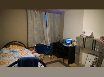 Room available 2nd semester