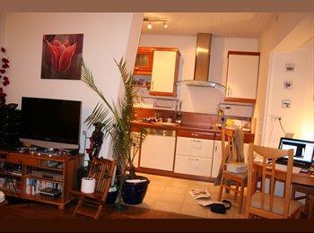 Appartager FR - magnifique appartement 200m du RER B , tout équipé - Arcueil, Paris - Ile De France - €600