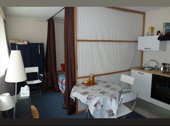 Loue studios meublé GRENOBLE centre