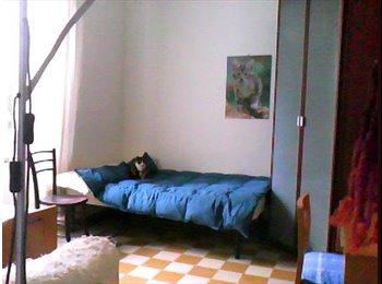 In villino d'epoca stanza per amanti animali!