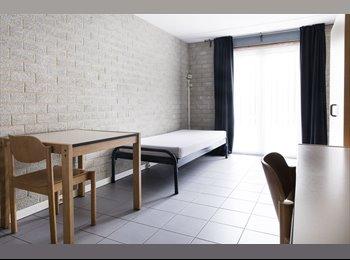 EasyKamer NL - Studentenkamers en studio's voor Maastricht - Centrum, Maastricht - €425