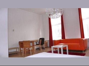 Mooie lichte kamer nabij Erasmus Med.Facul