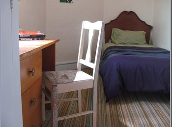 NZ - Room to rent in cental location all day sun - Dunedin Central, Dunedin - $100