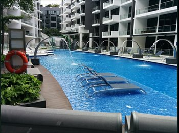 EasyRoommate SG - Sunny Expat Condo by Somerset MRT - Orchard, Singapore - $1900
