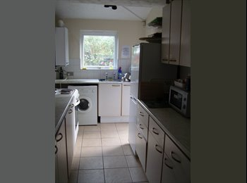 Basildon Large double room to let - £365 pcm