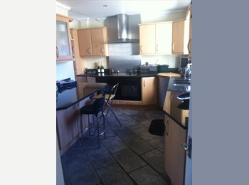 EasyRoommate UK - room to let in 4 bed house with pool and sky TV - Guernsey, Guernsey - £800