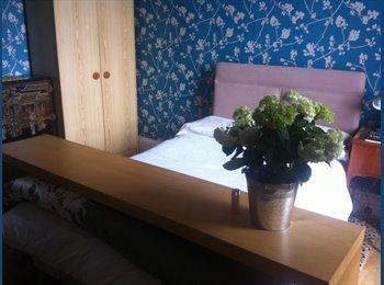 EasyRoommate UK - sunny cosy double room overlooking garden - Dundee, Dundee - £350
