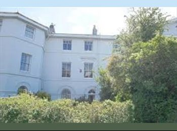 EasyRoommate UK - LARGE DOUBLE ROOM ALL BILLS INC WIFI & CLEANER - Stonehouse, Plymouth - £390