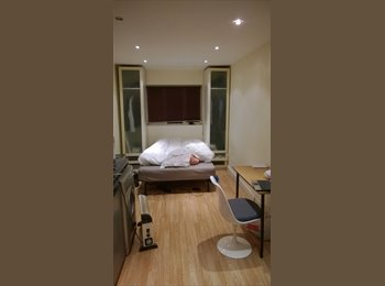 Studio Flat to share with 30years old professional