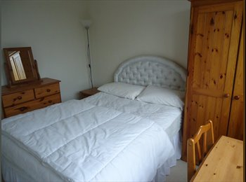EasyRoommate UK - Spare room to let - Exeter, Exeter - £520