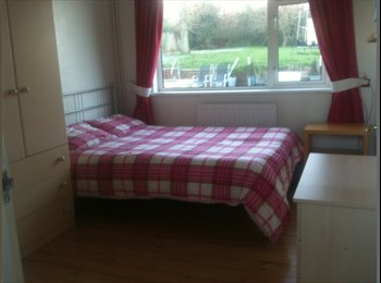 EasyRoommate UK - Lovely peaceful home - Exeter, Exeter - £350