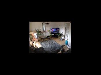 EasyRoommate UK - Single room £50pw inc bills ect - Wellingborough, Wellingborough - £250