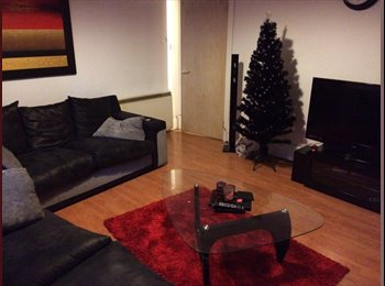 EasyRoommate UK - 2 bedroom furnished flat for let near Uni - Dundee, Dundee - £450