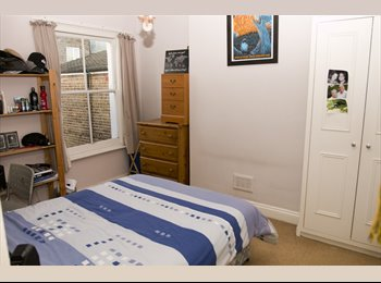 Double room to rent in leafy Ravenscourt Park