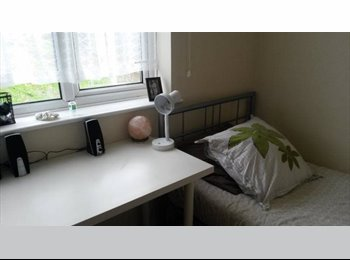 EasyRoommate UK - Single room in lovely student home - Canterbury, Canterbury - £370
