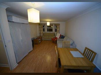 Double room (en-suite) in gorgeous modern flat