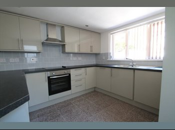 EasyRoommate UK - 1 single room + double bed to share+ en suite bran - Cathays, Cardiff - £300