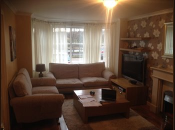 Modern two bedroom flat, double bedroom and ensuite