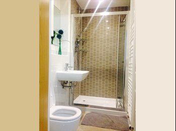 Ensuite double room to let