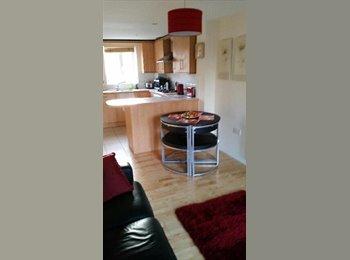 EasyRoommate UK - Lovely new double bedroom with en-suite - Horfield, Bristol - £500