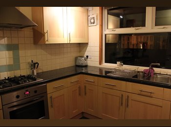 EasyRoommate UK - New housemate wanted! Dead or alive! :) - Cathays, Cardiff - £325