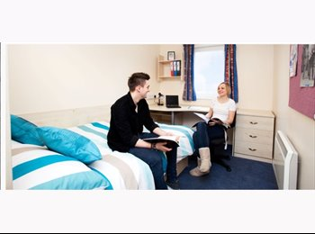 EasyRoommate UK - 1 double ensuite room  to rent available asap - Loughborough, Loughborough - £440