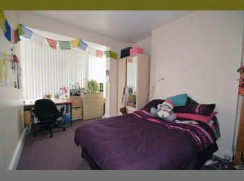EasyRoommate UK - Big room in a nice clean house - Birmingham, Birmingham - £350