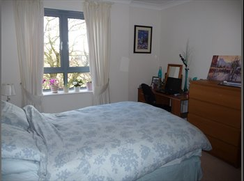 EasyRoommate UK - Lovely En-Suite Double Room in Jericho - Oxford, Oxford - £675