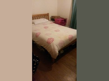 EasyRoommate UK - Good-sized double room in lovely modern flat - Leytonstone, London - £450