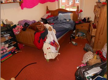 EasyRoommate UK - LOVELY FLAT SHARE, EASY GOING PEOPLE - GOOD AREA - Roath, Cardiff - £250
