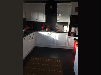 EasyRoommate UK - Stunning whole 3 bed house to rent - Llandaff, Cardiff - £350
