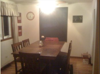 Room avaiable in Downers in 3 bedroom home.