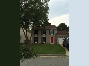 Professional/Student with newly remodled house
