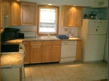Clean Room Available Close To All White Plains