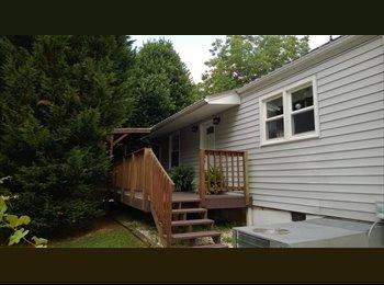 EasyRoommate US - Roommate Need to share Tree Streets Home - Johnson City, Johnson City - $450