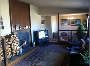 Room for rent in north reno