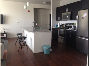 Looking for a short term roommate fully furnish